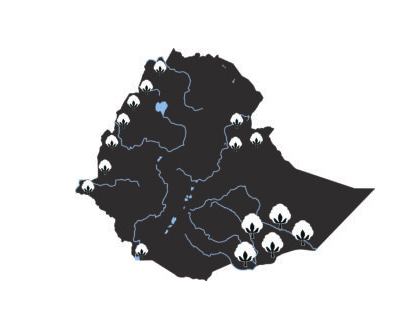 Ethiopia: Country shape with cotton production areas © Bremen Cotton Exchange