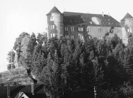 This photograph from spring 1946 shows Hohenstein Castle with camouflage paint and damage caused by shell impacts. © Hohenstein
